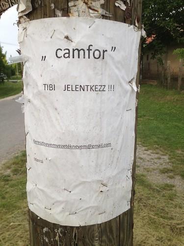 Camfor Tibi