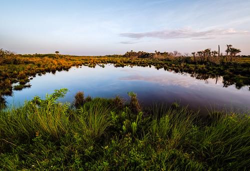sky panorama usa cloud plant reflection tree water grass landscape pond florida cloudy swamp marsh titusville centralflorida merrittislandnationalwildliferefuge minwr blackpointwildlifedrive bpwd em5markiihighres