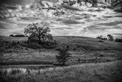 philadelphia landscape outdoors us unitedstates tennessee