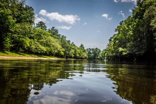 Edisto River Beer Commercial and Rope Swing Float-91