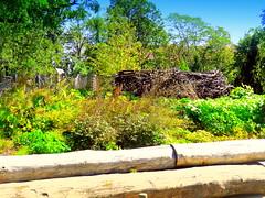 Fence-Logs