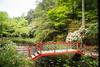 Red bridge (2)