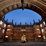 UK - Oxford - Bodleian Library - Old Schools Quad at Christmas 02_DSC3501