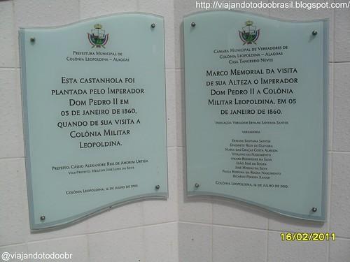 Colônia Leopoldina - Castanhola plantada por D. Pedro II