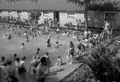 Outdoor swimming pool, Edmonton