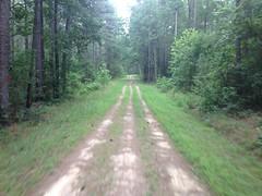 Triple Track