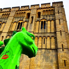 This dragon is called 'girl with a dragon tattoo', she's at the Norwich castle and she's gorgeous! @gogodragons #upsticksandgo #dragonhunting #gogodragon #exploring #communityart #greatfun #norwich #instagood #travellingtheworld #instadragon #instatra