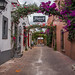 2016 - Mexico - Tequisquiapan - Wine Bar por Ted's photos - Returns Mid May