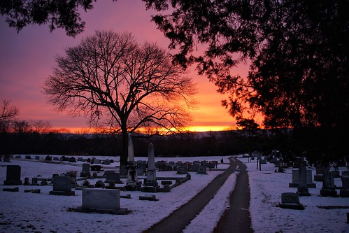 sunrise berryvilleva greenhillcemetery cemetery tree 365the2017edition 3652017 day10365 10jan17 100xthe2017edition 100x2017 image4100