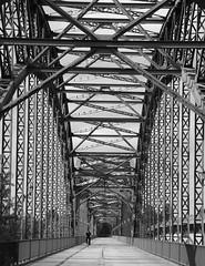 Alte Brücke (Old Bridge)