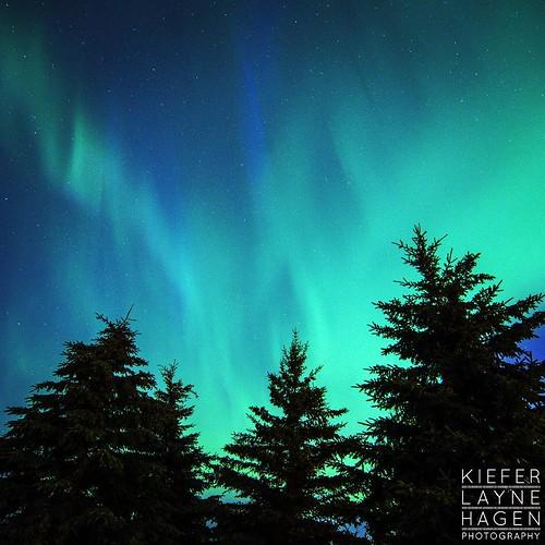 Wednesday night stayed up real late but got some beauties. #nature #stars #sky #night #longexposure #alberta #northernlights #aurora #auroroaborealis #nightsky #star #nightimages #cabin #canada #FramesCatcher #photo #yeg #photographer #fineart #landscape