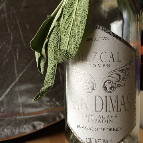 Sage leaves hanging off a bottle of mezcal joven. This is where the magic happens.