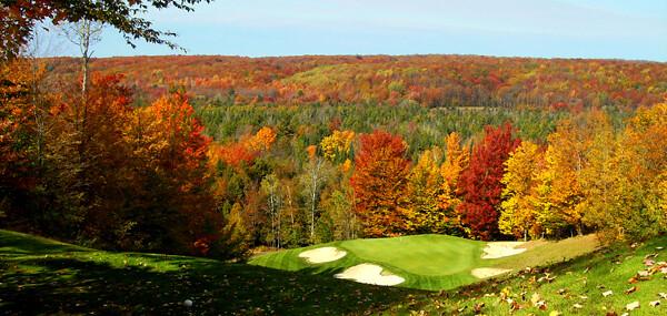 Treetops Fall Golf