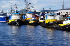 Tugs of all sizes