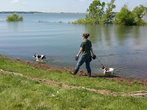 2015-06-27 - Morning Walk at Smithville Lake - 0023 [flickr]