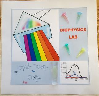 023-BiophysicsLab