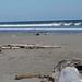 Levin NZ Beach