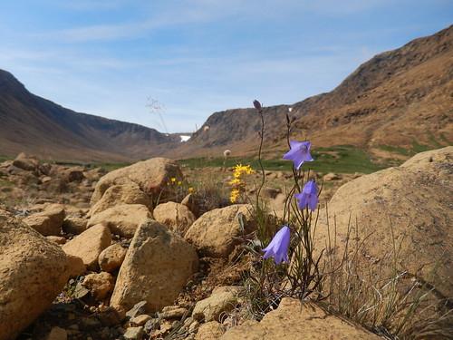 Gros Morne NP - Tablelands Trail - 2