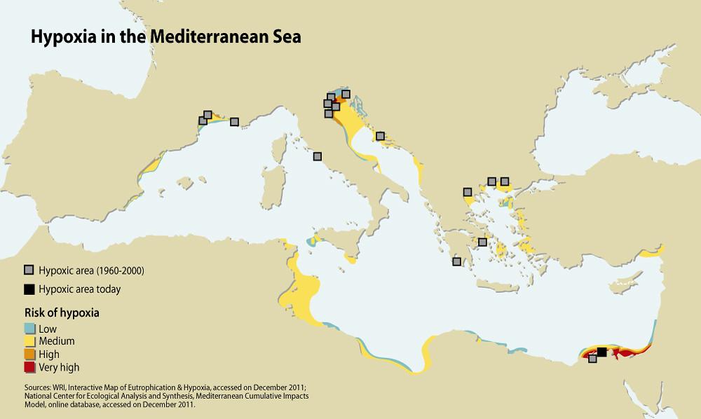 Hypoxia in the Mediterranean Sea | GRID-Arendal