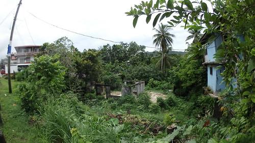 elmada fsm micronesia pohnpei kolonia