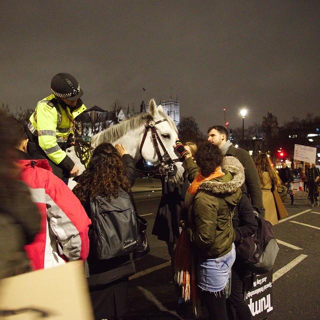 Protestors stroking a police horse