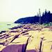 Small photo of Acadia
