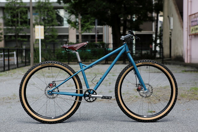 *SURLY*1×1 complete bike