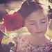 rose. by carmila84