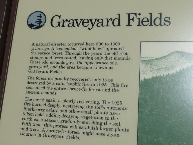 Graveyard Fields - exhibit