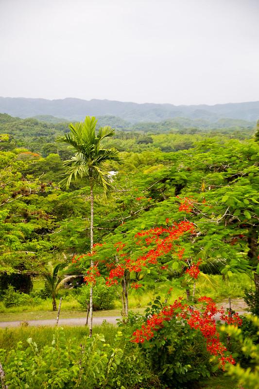 Montego Bay Jamaica-12.jpg