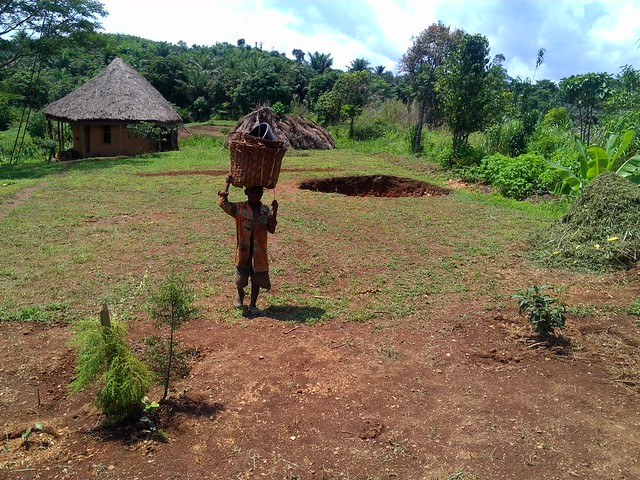 Scene from Ndanifor Permaculture Eco-village in Bafut in Cameroon's Northwest Region, the country's first and only eco-village which is based on the principle that the answer to food insecurity lies in sustainable and organic methods of farming