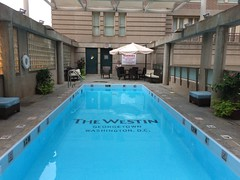 Guess which Washington hotel this pool belongs  to!