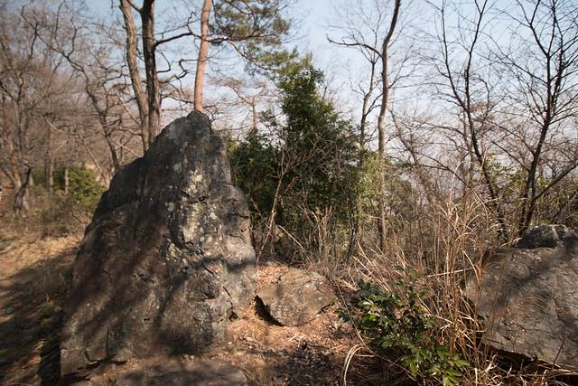 20160326-三毳山-0159.jpg