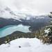 Peyto in Snow by Kirk Lougheed