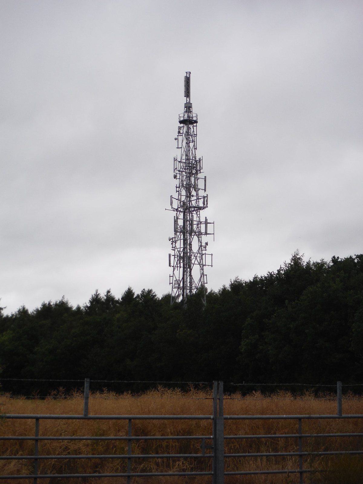 Transmission Mast SWC Walk 189 Beeches Way: West Drayton to Cookham
