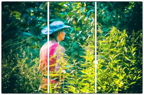Dans le jardin de Brigitte