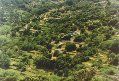 Green valley panorama 1992