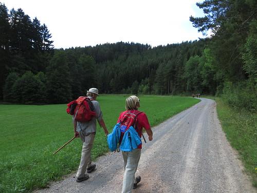 20150726 01 157 Romea Wald Weg Wiese Pilger