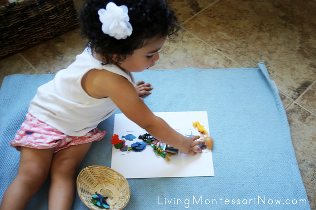 At 20 Months, Matching the Safari Ltd Coral Reef TOOB Miniatures with the Coral Reef TOOB Key