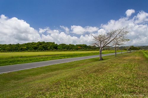 road sky green outdoor bluesky caribbean streetscenes naturephotography
