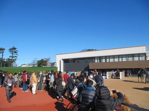中山競馬場のグランプリロードに集まる観衆