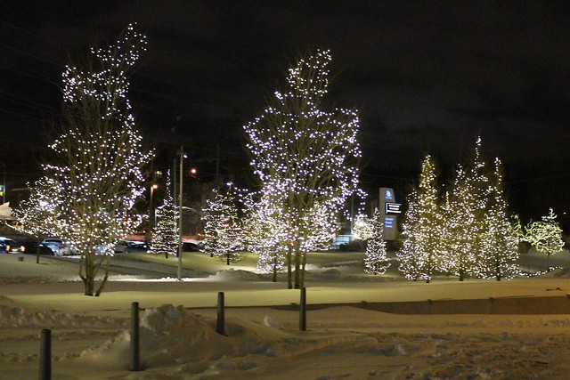 main-street-newmarket-lights