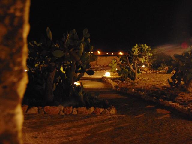 Rutigliano- Parco dei Fichi d'India- Rutiglianoweb