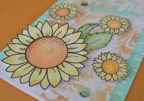 Sonnenblumengrüße
