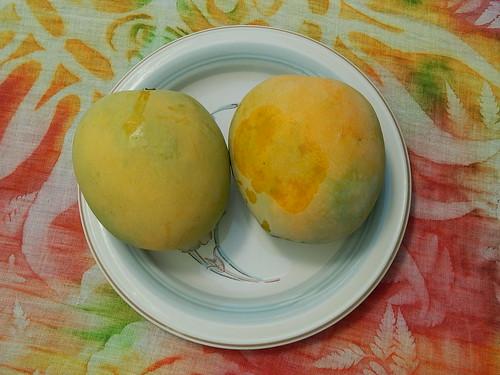 Pirie mangoes