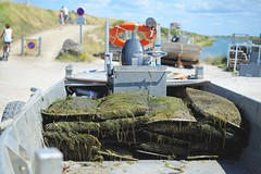 Oyster fishing in Noirmoutier