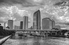 Tampa skyline in Black and White
