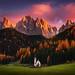 Autumn Faith by albert dros