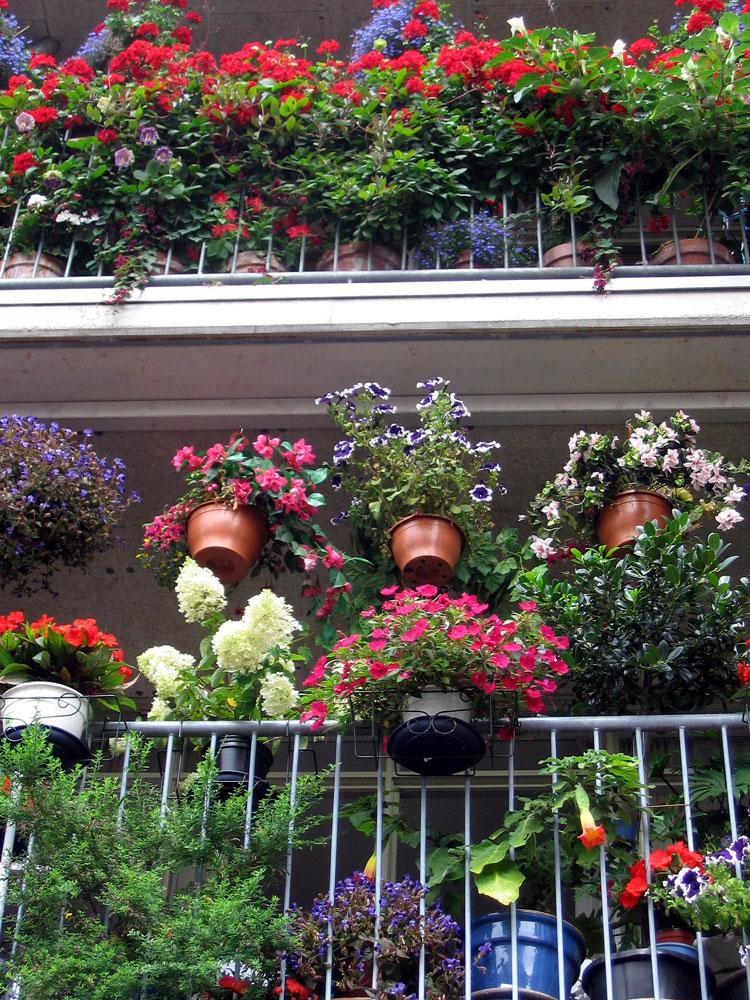 Balcony Flower Garden Ideas