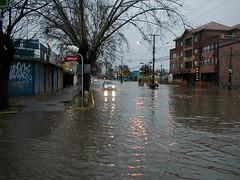 natural disaster, flood, disaster, street, neighbourhood,